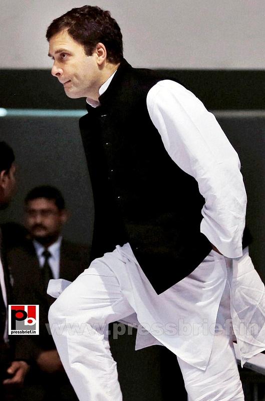 Rahul Gandhi at AICC session in New Delhi (17)
