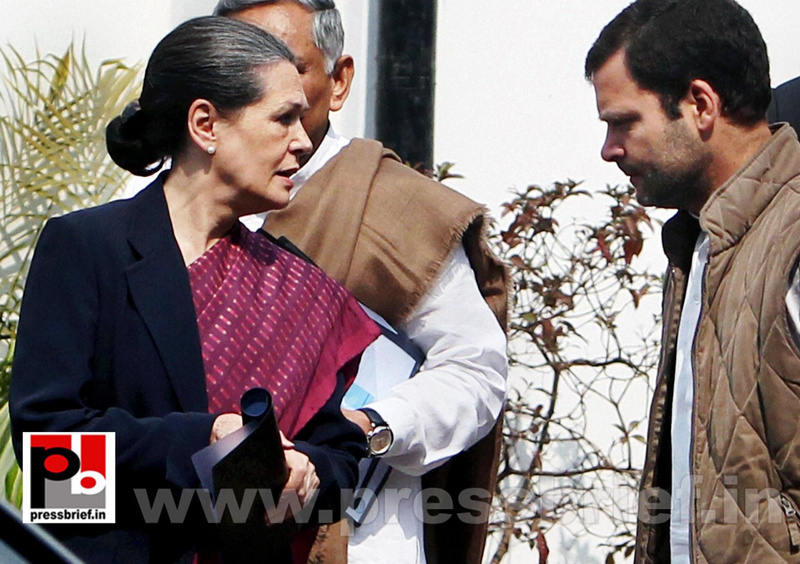 Sonia Gandhi attend campaign committee meeting (3)