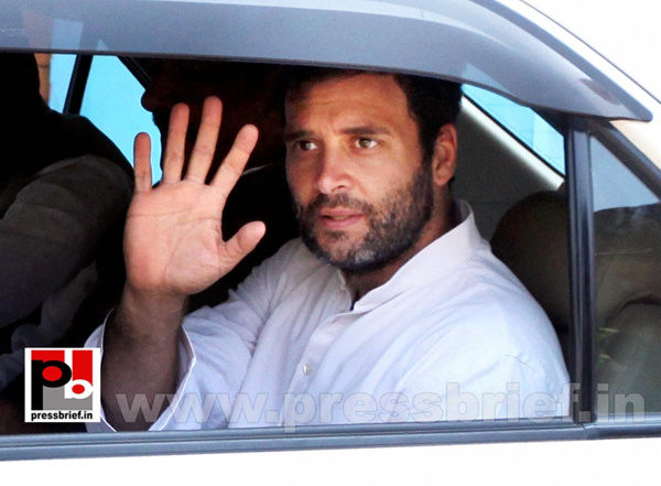 Rahul Gandhi at Thane, Maharashtra (5) by Pressbrief In