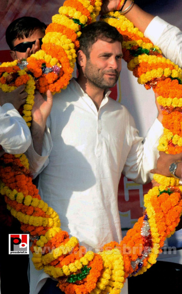 Rahul Gandhi at Aurangabad in Bihar (3) by Pressbrief In