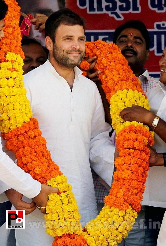 Rahul Gandhi at Aurangabad in Bihar (8)