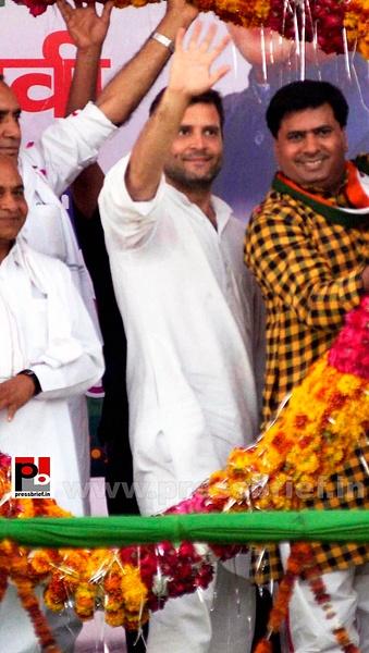 Rahul Gandhi at Morena, M.P (1) by Pressbrief In