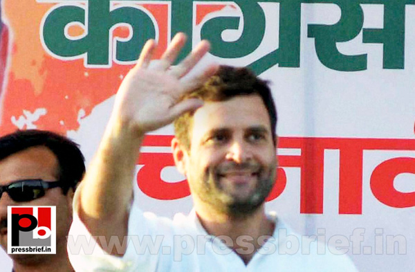 Rahul Gandhi at Morena, M.P by Pressbrief In