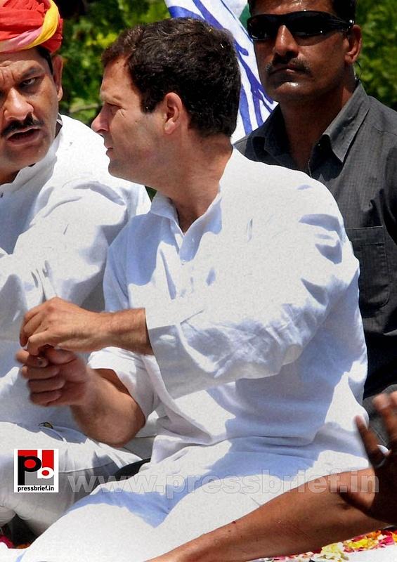 Rahul Gandhi's roadshow at Alwar in Rajasthan (2)