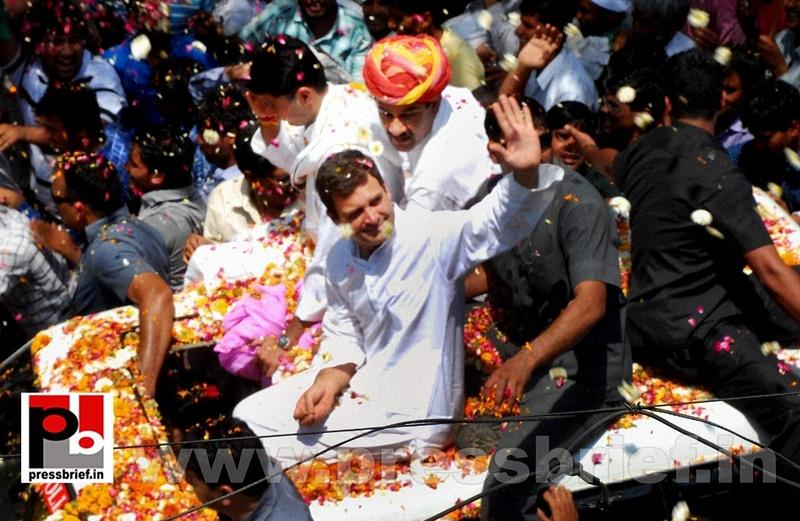 Rahul Gandhi's roadshow at Alwar in Rajasthan (5)