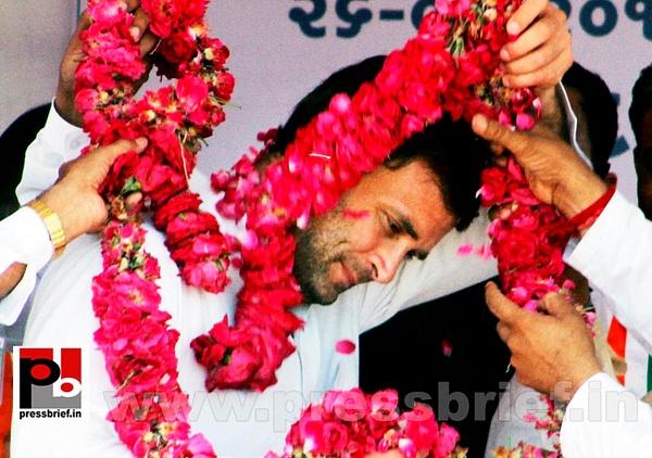 Rahul Gandhi campaigns in Gujarat (3) by Pressbrief In