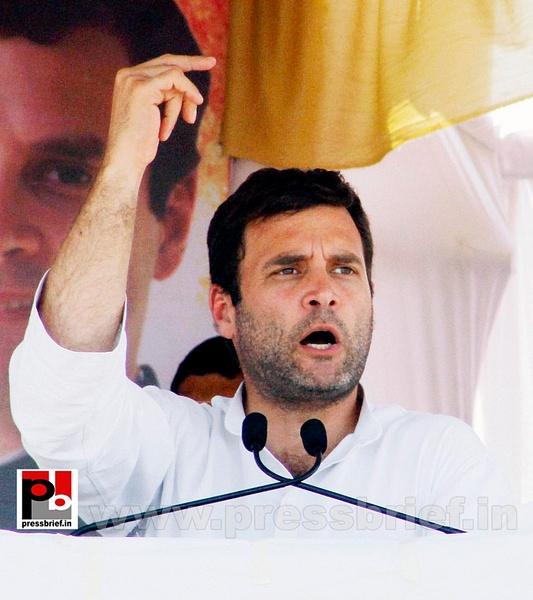 Rahul Gandhi campaigns in Gujarat (4) by Pressbrief In