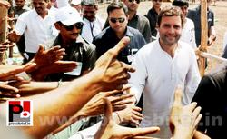 Rahul Gandhi campaigns in Gujarat
