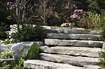 Chris James Landscaping – Dedicated Landscaping Maintenance in NJ by Landscapedesign