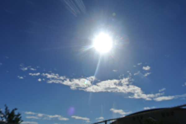 sunny by CesarMoran67258