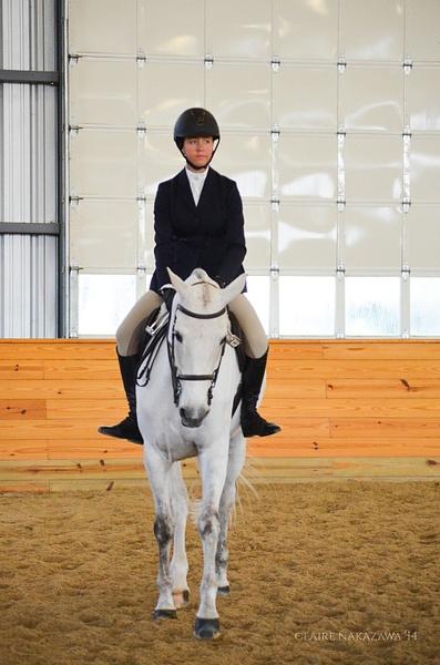 Junior/Adult Amateur Equitation Finals (Flat) by ClaireNakazawa