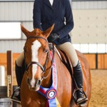 Junior/Adult Amateur Equitation Finals (over fences)