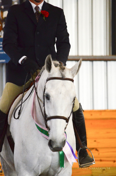 Low Adult Amateur Medal Finals by ClaireNakazawa