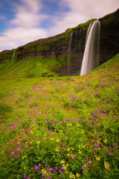 summer waterfall - Iceland - Tony Sweet