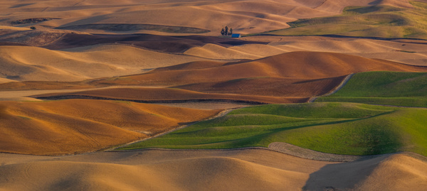 Palouse harvest, WA - Stitched pans - Tony Sweet