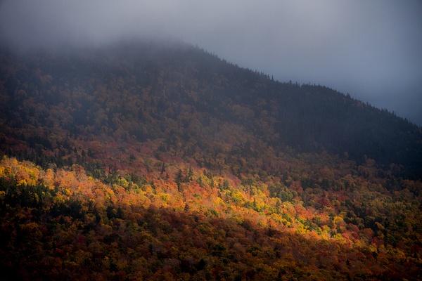 _DSC1006 - New Hampshire Fall - Tony Sweet