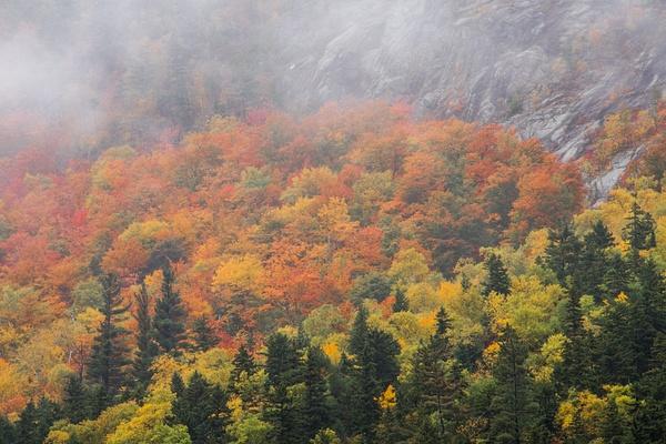 _DSC1047 - New Hampshire Fall - Tony Sweet