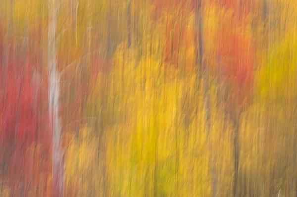 _DSC1801-Edit-Edit - New Hampshire Fall - Tony Sweet