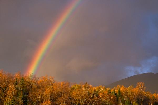 _DSF6324-Edit - New Hampshire Fall - Tony Sweet