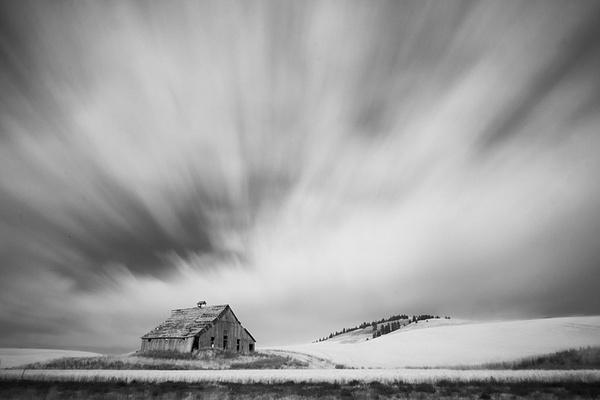 _DSF4615-Edit-Edit - Palouse Harvest - Tony Sweet