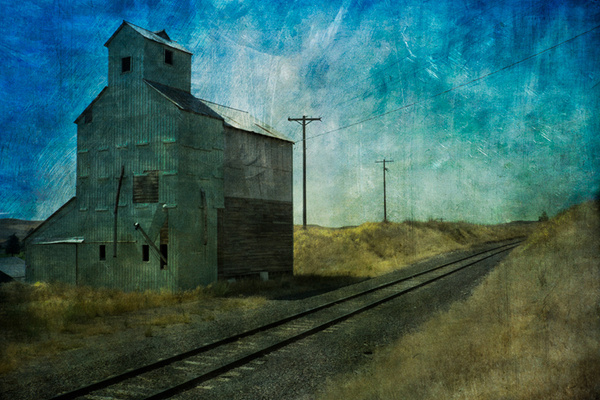 _DSF4950-Edit - Palouse Harvest - Tony Sweet
