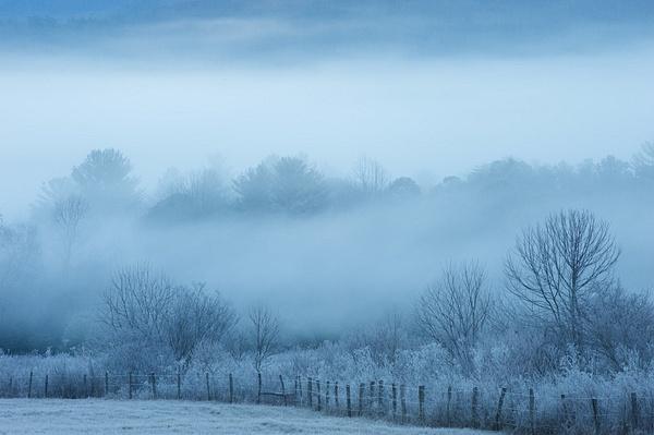 _DSC1164 - Smokey Mountains Winter - Tony Sweet