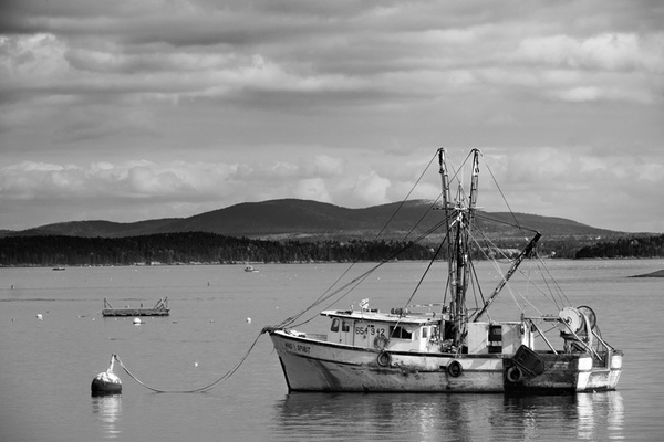 _DSF6101-Edit-Edit-2 - Acadia NP, Maine - Tony Sweet