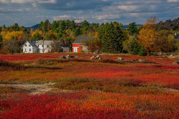 _DSC0124-Edit - Acadia NP, Maine - Tony Sweet