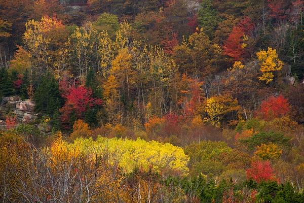 _DSC0401-Edit-Edit - Acadia NP, Maine - Tony Sweet