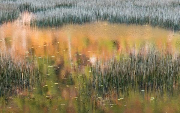 _DSC0662-Edit-Edit - Acadia NP, Maine - Tony Sweet