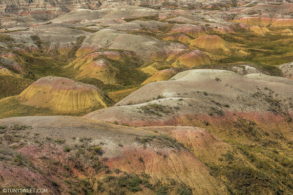 Yellow Mounds - Badlands NP, SD - Tony Sweet