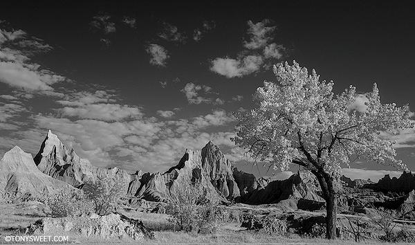 Cedar Pass - Badlands NP, SD - Tony Sweet
