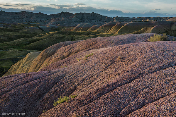 Yellow Mounds - Badlands NP, SD - Tony Sweet