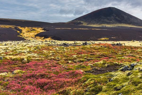 Snaefflesnes NP - Iceland Sept. 2016 - Tony Sweet