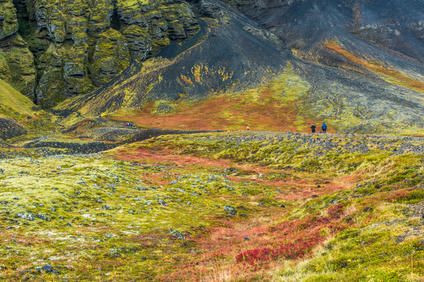 Iceland Sept. 2016 by Tony Sweet