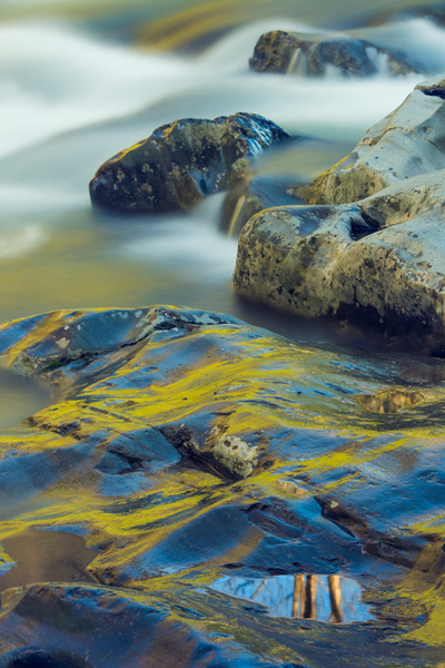Greenbriar reflection - Great Smoky Mountains, TN - Tony Sweet