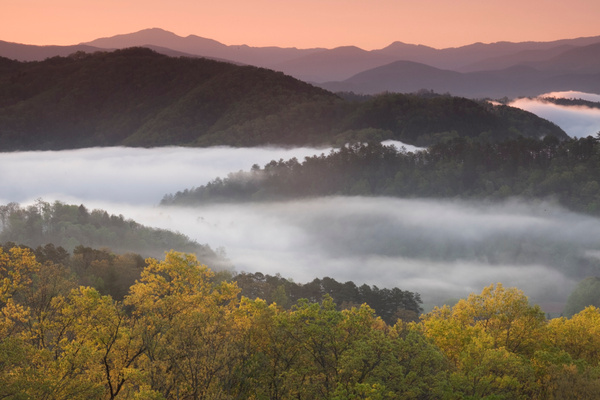 Valley fog - Great Smoky Mountains, TN - Tony Sweet