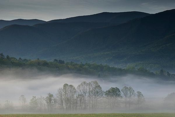 Lea Overlook dawn - Great Smoky Mountains, TN - Tony Sweet