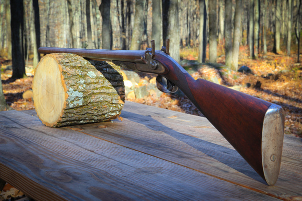 Scott & Son Civil War Shotgun by DmitriyShvetsov45797