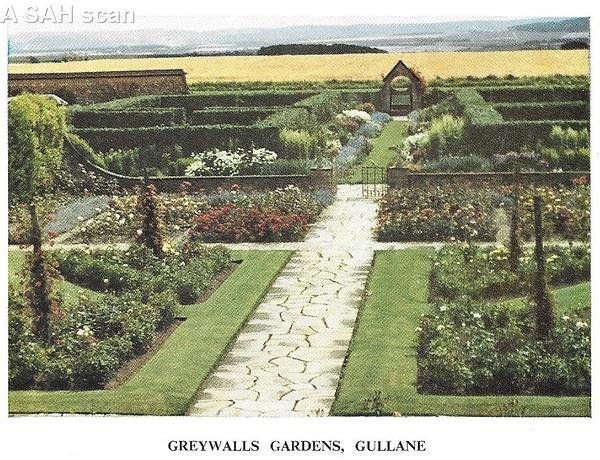 gullanegreywalls by Stuart Alexander Hamilton