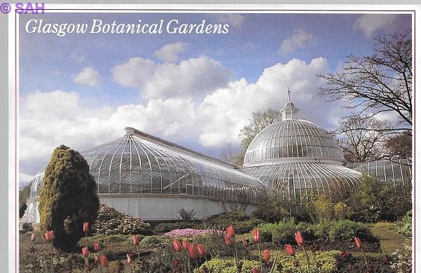Glasgow Botanical Gardens by Stuart Alexander Hamilton