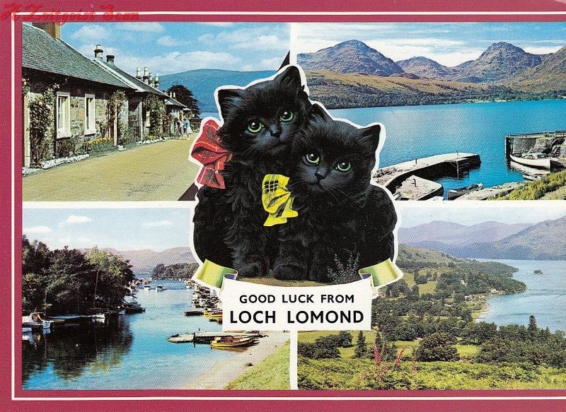 lochlomondcat