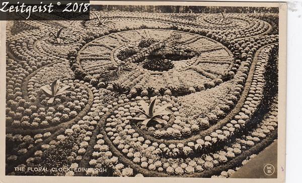 floral1923 by Stuart Alexander Hamilton
