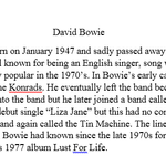 Photo essay David Bowie