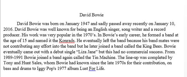 Photo essay David Bowie by ValerieSagun