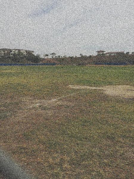 field by AshleyNerat