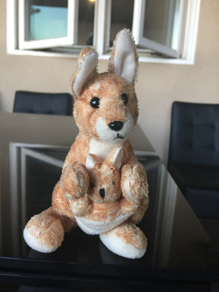 kangaroo by ElizabethChiroque6827