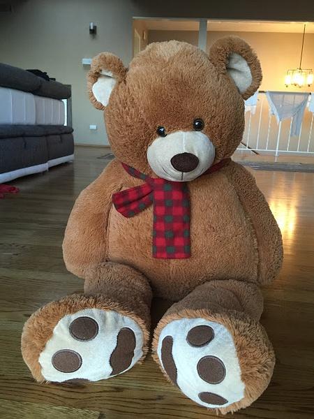 bear by ElizabethChiroque6827