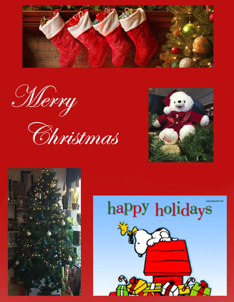 Merry Chirstmas to Everyone by ElizabethChiroque6827