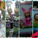 iPhone photo SP_11846205